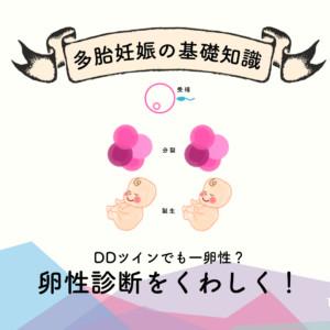 DDツインでも一卵性?卵性診断をくわしく解説!