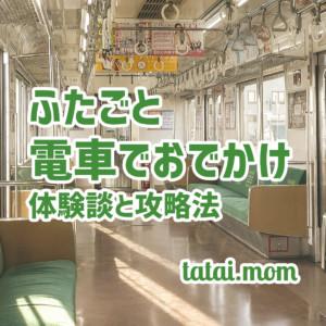 ふたごと電車でおでかけ!体験談