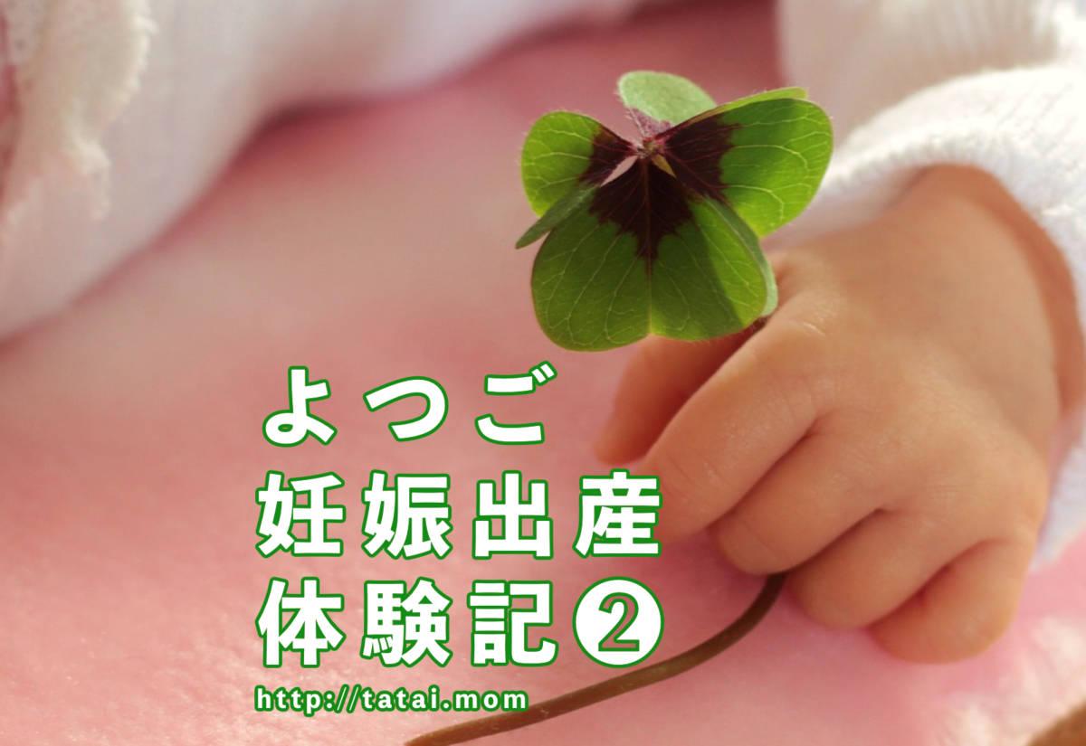 初産でよつごを妊娠!!第2回【よつご出産記】