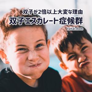 双子エスカレート症候群!? 双子育児が2倍以上大変な理由と5つの対策