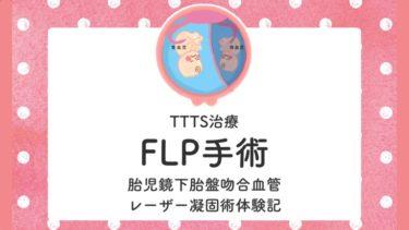 FLP 手術 TTTS 双胎官輸血症候群 体験談 経験